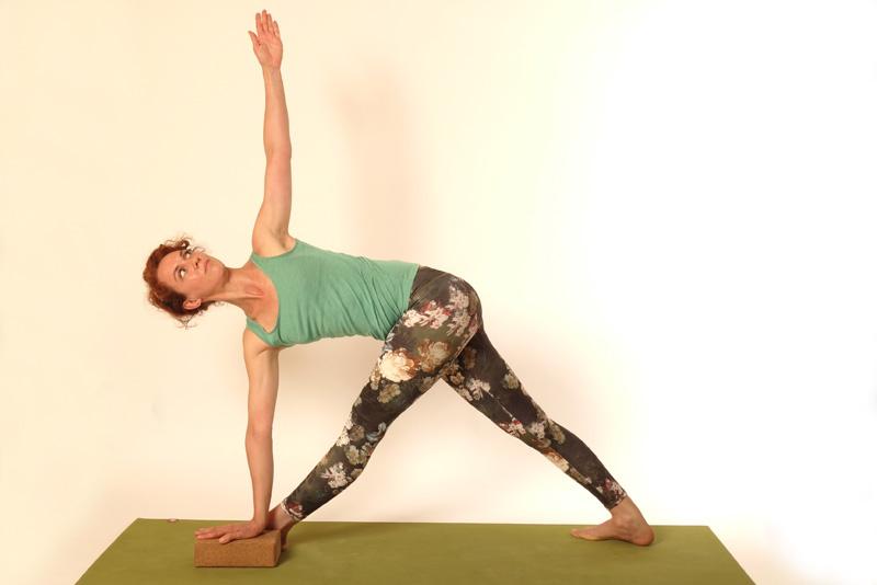 yoganika-parivrtta-trikonasana